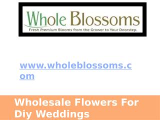 Wholesale Flowers For Diy Weddings - www.wholeblossoms.com.pptx