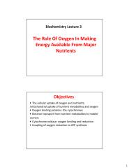 Lecture 3-The role of Oxygen in making energy available from major nutrients.pdf